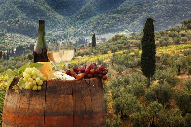 与桶的白葡萄酒在葡萄园在Chianti,托斯卡纳,意大利 库存图片