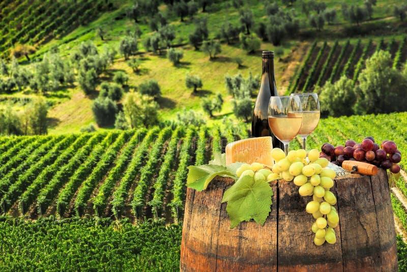 与桶的白葡萄酒在葡萄园在Chianti,托斯卡纳,意大利 免版税库存图片