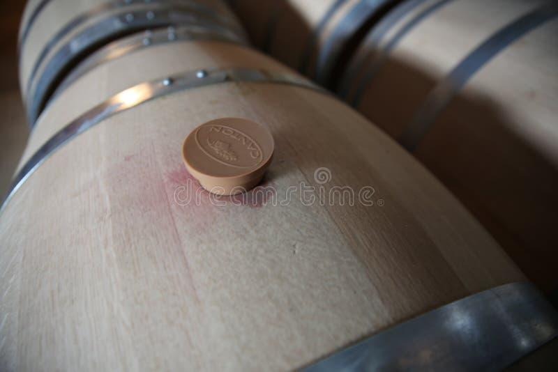 与桶盖的葡萄酒桶 库存照片