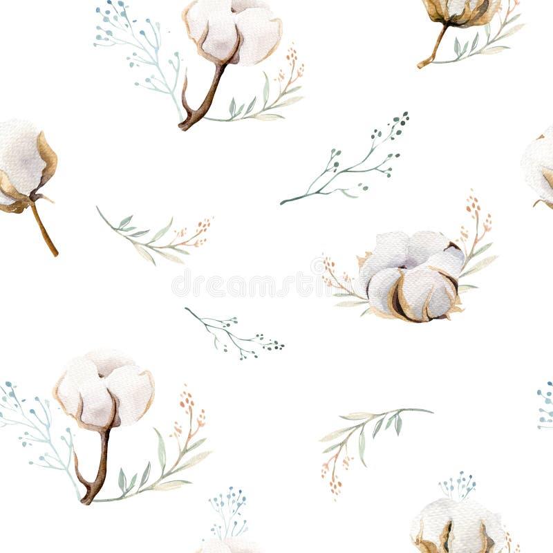 与棉花的水彩无缝的花卉样式 漂泊自然样式:叶子,羽毛,花,玫瑰色boho白色 向量例证