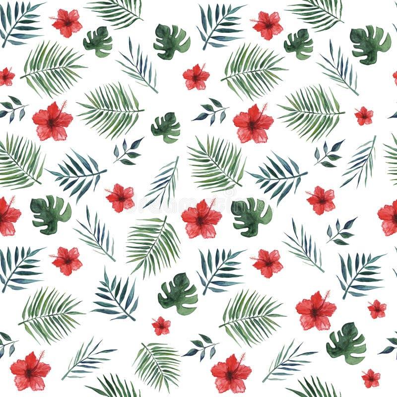 与棕榈叶、monstera叶子和红色木槿花的无缝的样式在白色背景 r 向量例证