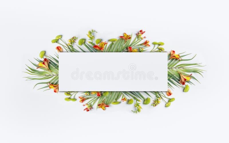 与棕榈叶和异乎寻常的花的夏天热带创造性的设计横幅或飞行物的在白色 库存图片