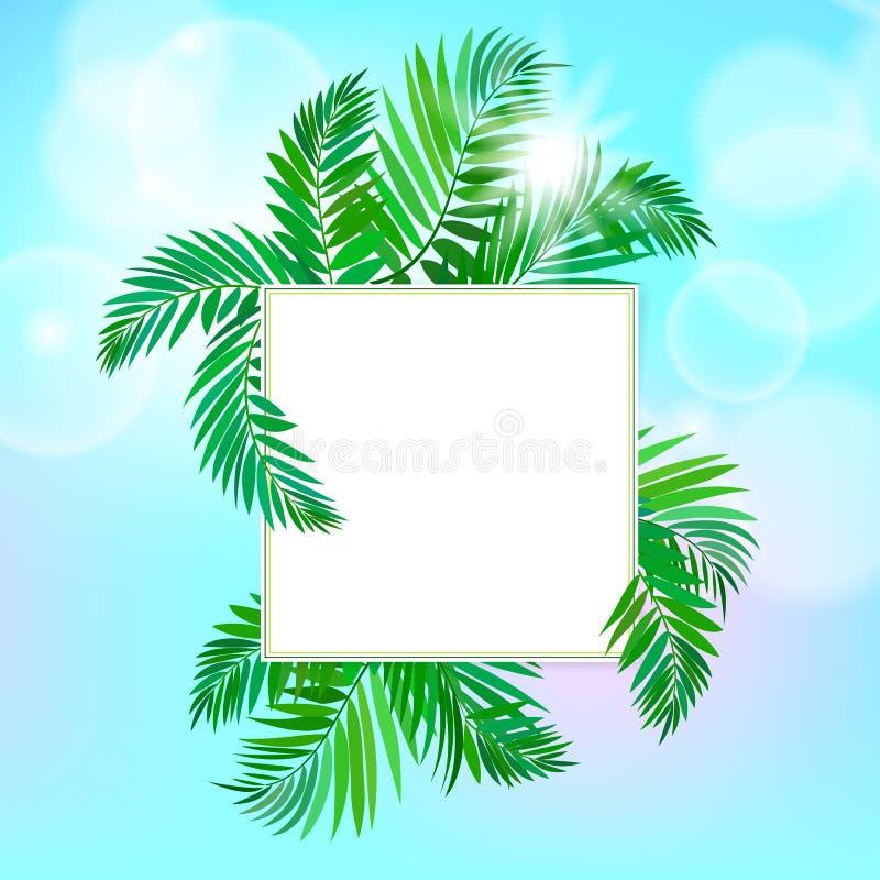 与棕榈叶的方形的卡片 库存例证