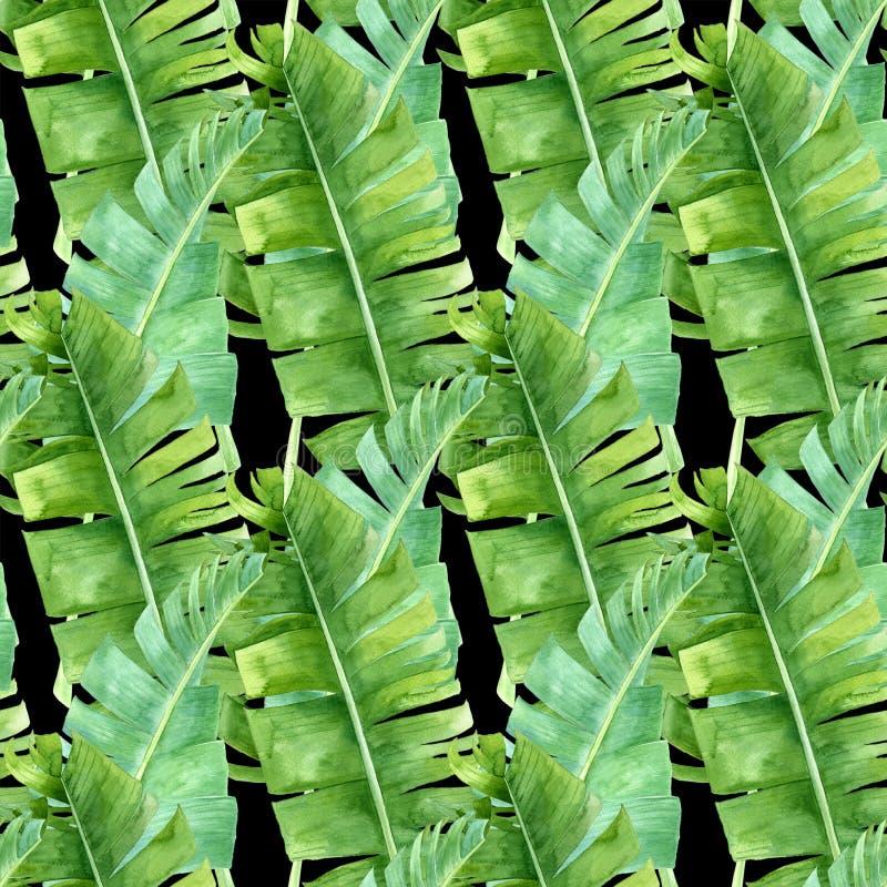 与棕榈叶的水彩无缝的样式 免版税库存照片