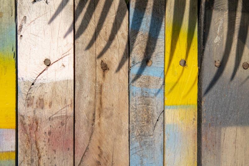 与棕榈叶阴影的五颜六色的木表面 被绘的木材纹理 自然boho背景 免版税库存图片