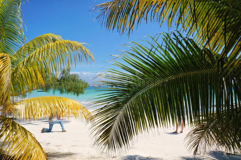 与棕榈和白色沙子的热带海滩 异乎寻常的海滨胜地和旅行目的地的假日和假期 免版税库存照片