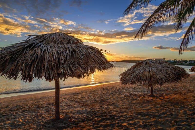 与棕榈和秸杆伞的兰乔月加勒比海滩在岸,日落视图,西恩富戈斯,古巴 免版税库存照片