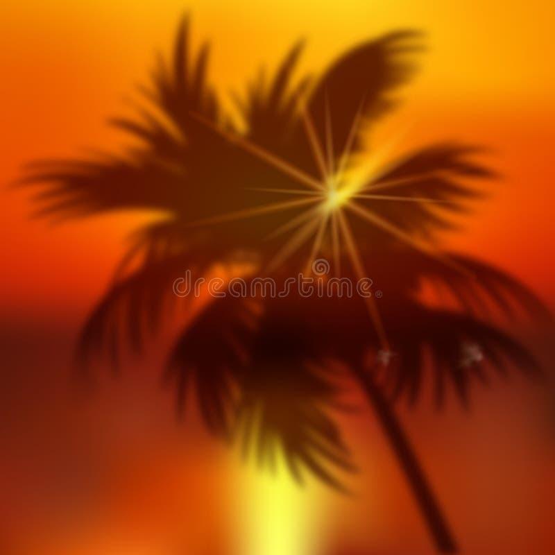 与棕榈树和日落的夏天背景 ?? 库存例证