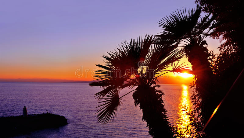 与棕榈树和灯塔剪影的日落 免版税库存照片
