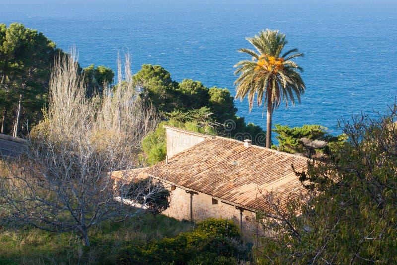 与棕榈树的别墅和海视图在巴尼亚尔武法尔,马略卡 免版税库存照片