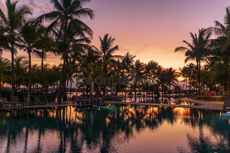 与棕榈树的旅馆水池在日落 图库摄影