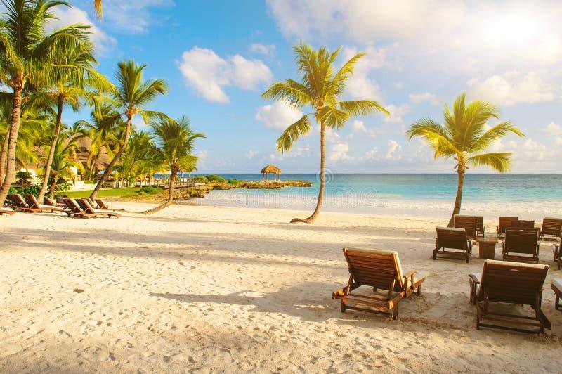 与棕榈树的日落梦想海滩在沙子。 热带天堂。 多米尼加共和国,塞舌尔群岛,加勒比,毛里求斯。 葡萄酒 图库摄影