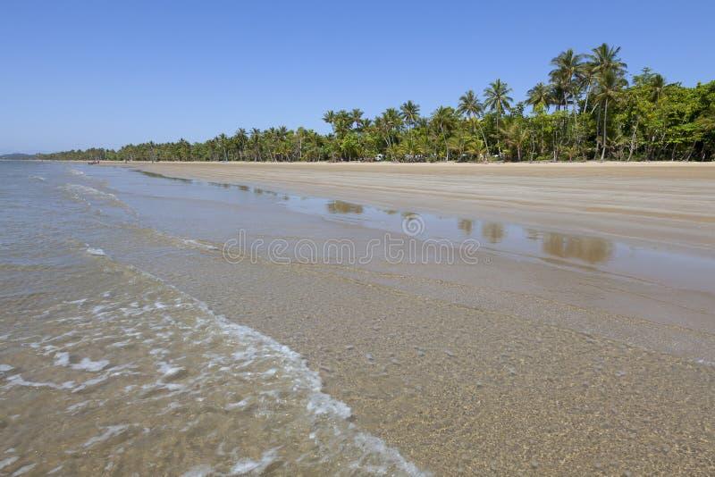 与棕榈树的海滩在使命海滩 免版税库存图片