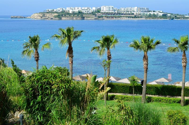 与棕榈树的海滩在博德鲁姆 库存照片