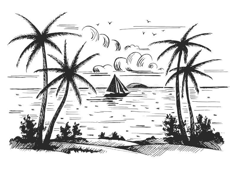 与棕榈树的海滨海滩 皇族释放例证