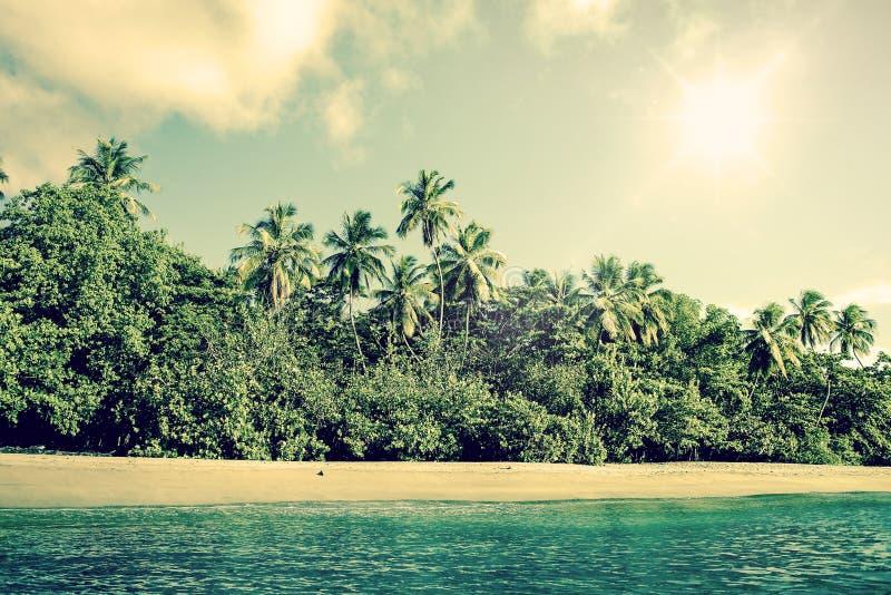与棕榈树的热带海滩风景 免版税库存照片