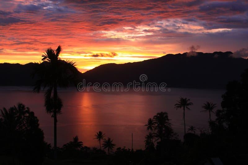 与棕榈树的美好的日落在湖边 免版税图库摄影