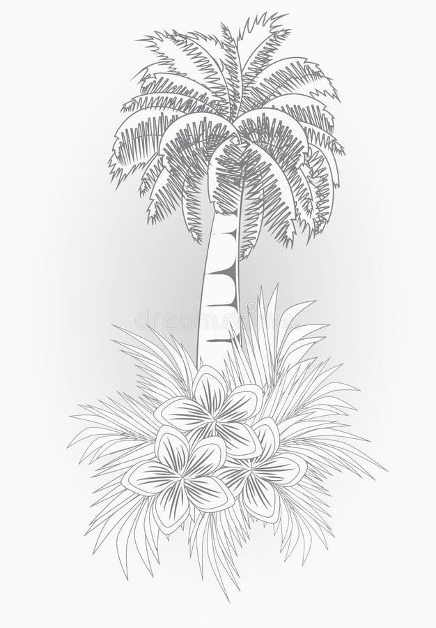 与棕榈树,传染媒介的美丽的夏天卡片 向量例证