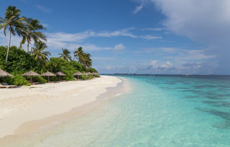 与棕榈环礁海岛马尔代夫的海滩 免版税图库摄影