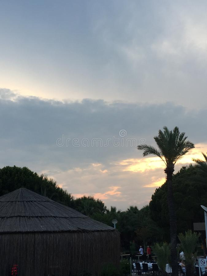 与棕榈的天空 免版税库存图片