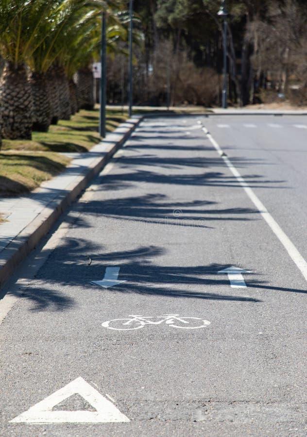 与棕榈的自行车车道在海滩附近 库存图片