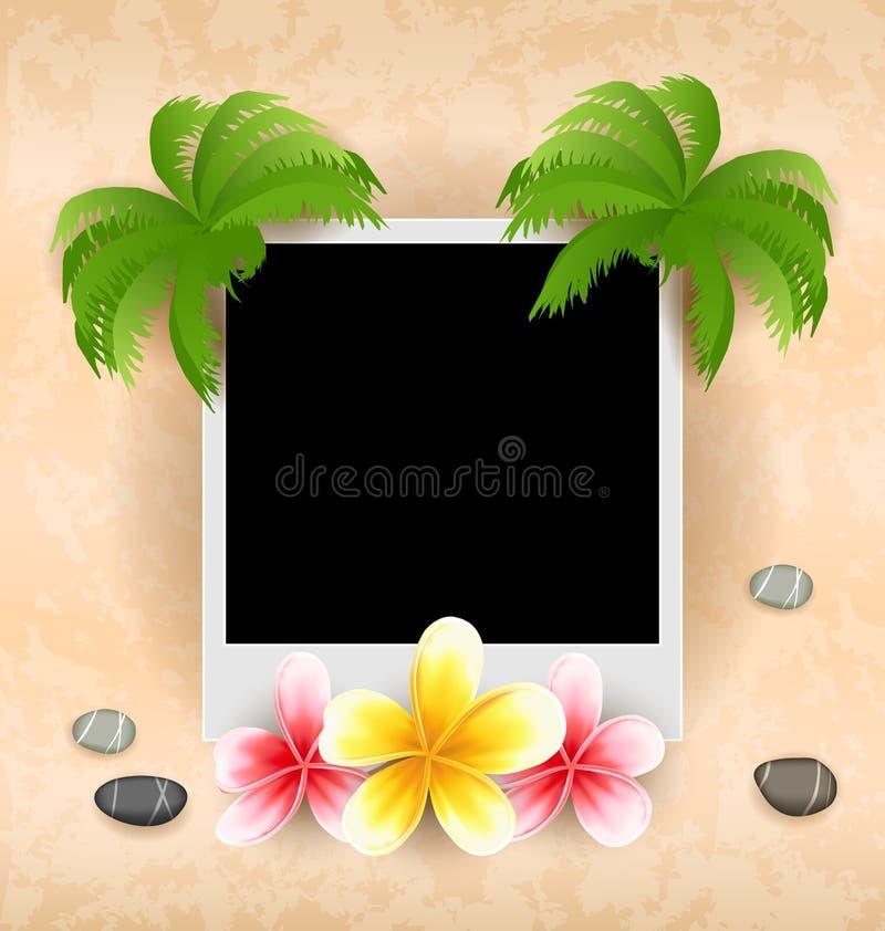 与棕榈,花赤素馨花,海小卵石的空的照片框架 向量例证