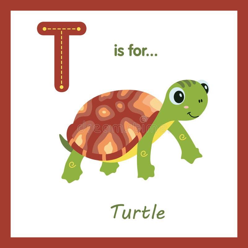 与棕色壳-儿童字母表信件的逗人喜爱的绿海龟 皇族释放例证
