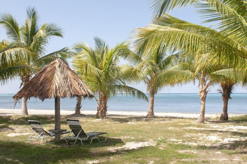 与椅子和棕榈树的小屋在与美丽的大海的海滩风景在海岛上 免版税图库摄影