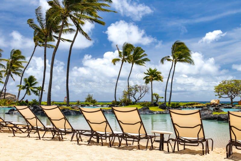 与椅子的热带天堂场面沿一个沙滩w的 库存图片
