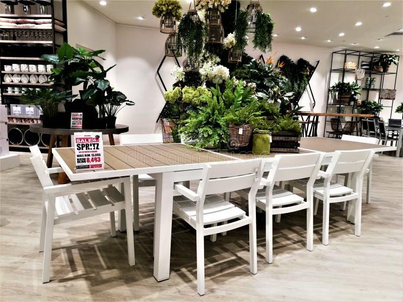 与椅子的美丽的木庭院桌 免版税图库摄影