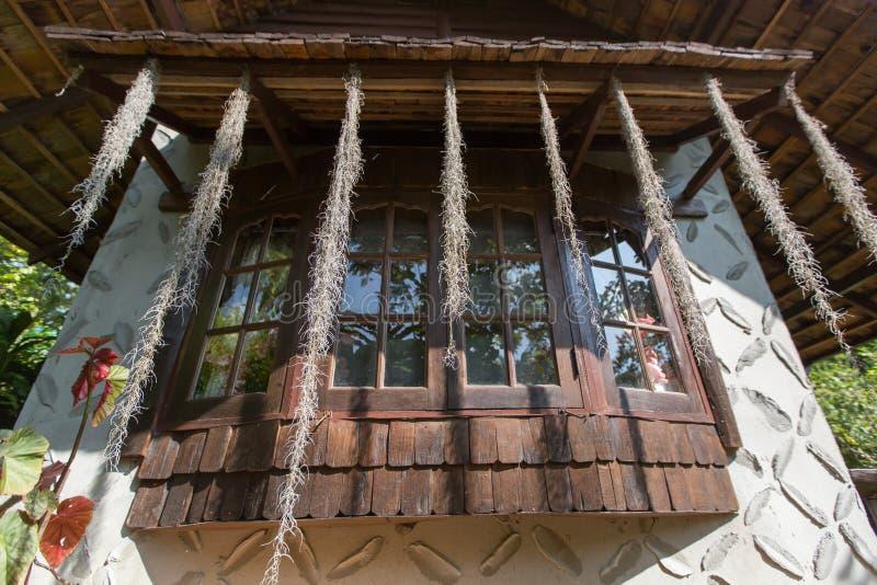 Download 与植物的泰国老牌窗口 库存照片. 图片 包括有 庭院, 本质, 春天, 工厂, 自然, 户外, 地标, 颜色 - 72352746