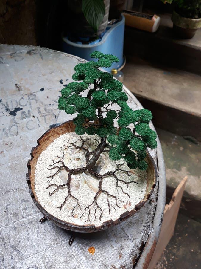 与椰子壳的手工制造树 库存照片