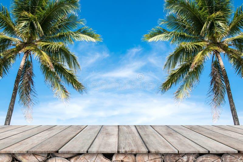 与椰子树和蓝天背景的老木台式 免版税库存照片