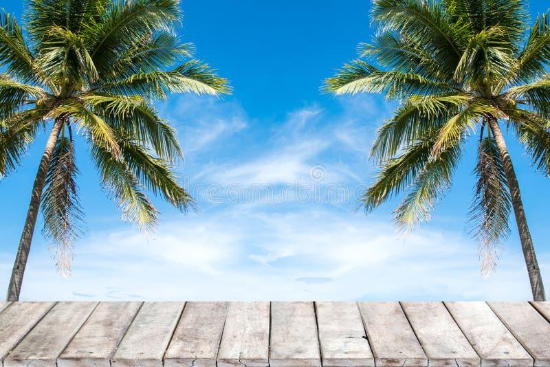 与椰子树和蓝天背景的老木台式 库存照片