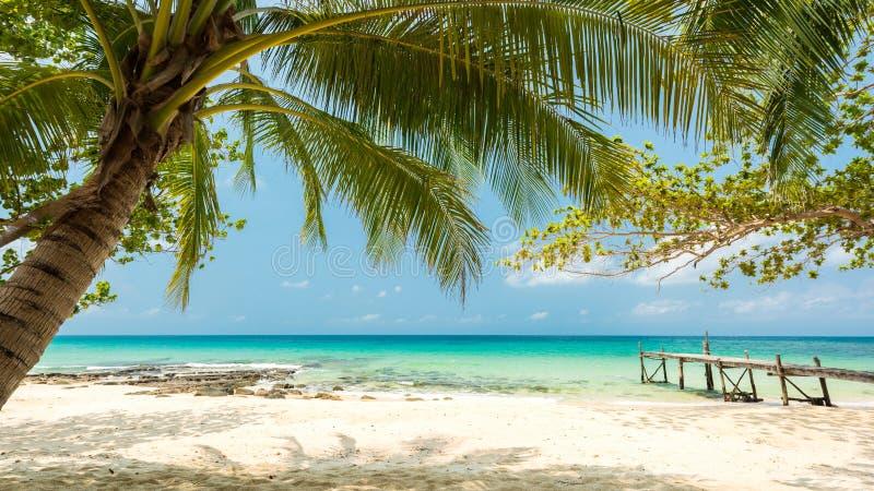 与椰子树,被找出的酸值Kood海岛的美丽的异乎寻常的海滩 免版税库存图片