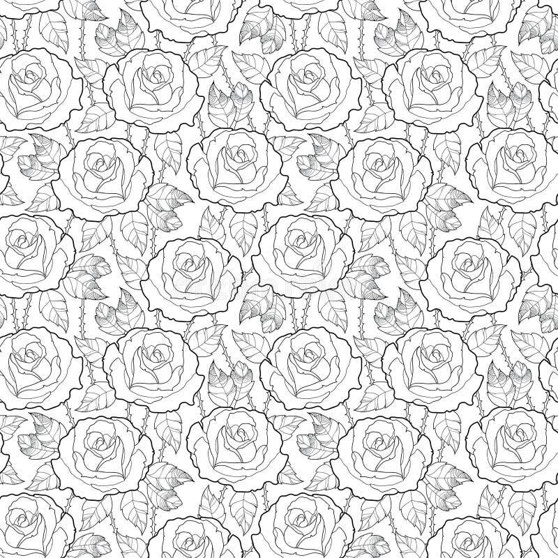 与概述玫瑰色花、词根和叶子的传染媒介无缝的样式在白色背景的黑色 高雅花卉背景 向量例证