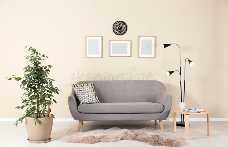 与榕属和沙发的时髦的客厅内部 免版税库存图片
