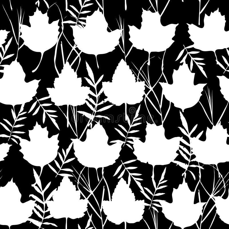 与槭树的传染媒介无缝的背景为时尚纺织品或网背景离开 白色剪影,黑背景 向量 向量例证
