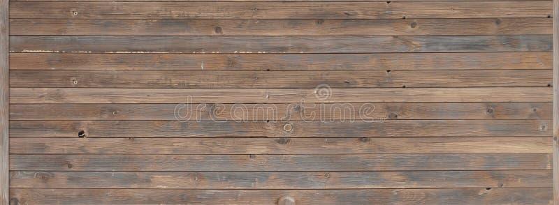 与横断的无缝的木纹理 库存图片