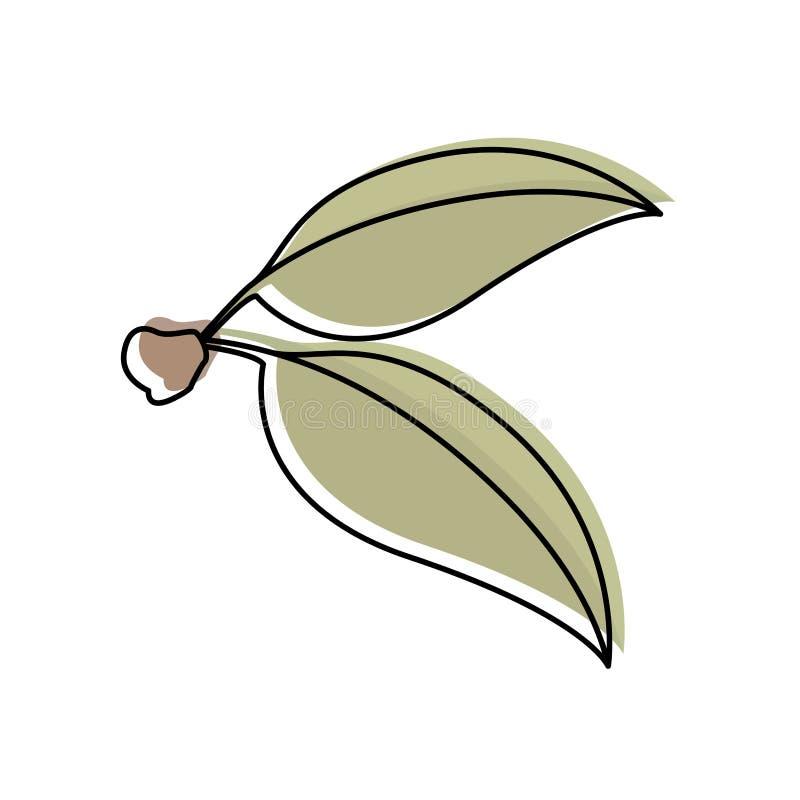 与樱桃绿色叶子水彩剪影的白色背景与词根的 库存例证
