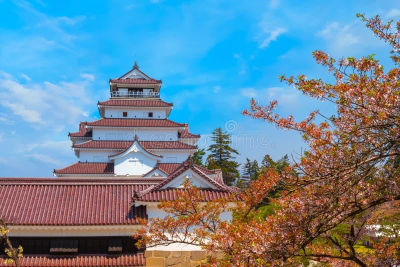 与樱花的会津若松市城堡在福岛,日本 免版税库存图片