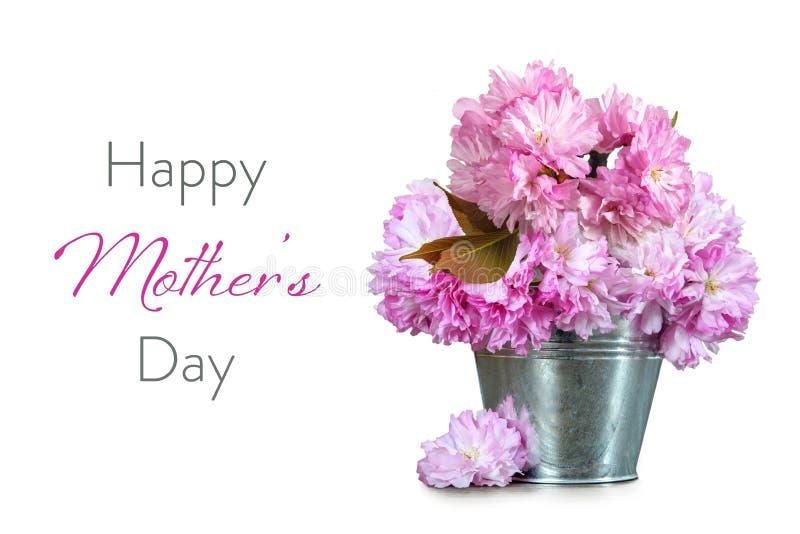 与樱花的愉快的母亲节卡片在白色背景隔绝的桶 免版税库存图片