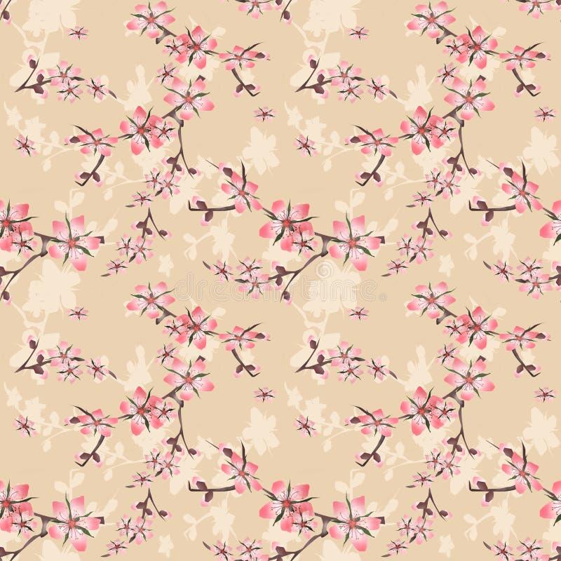 与樱花纹理的无缝的花卉样式在灰棕色 向量例证