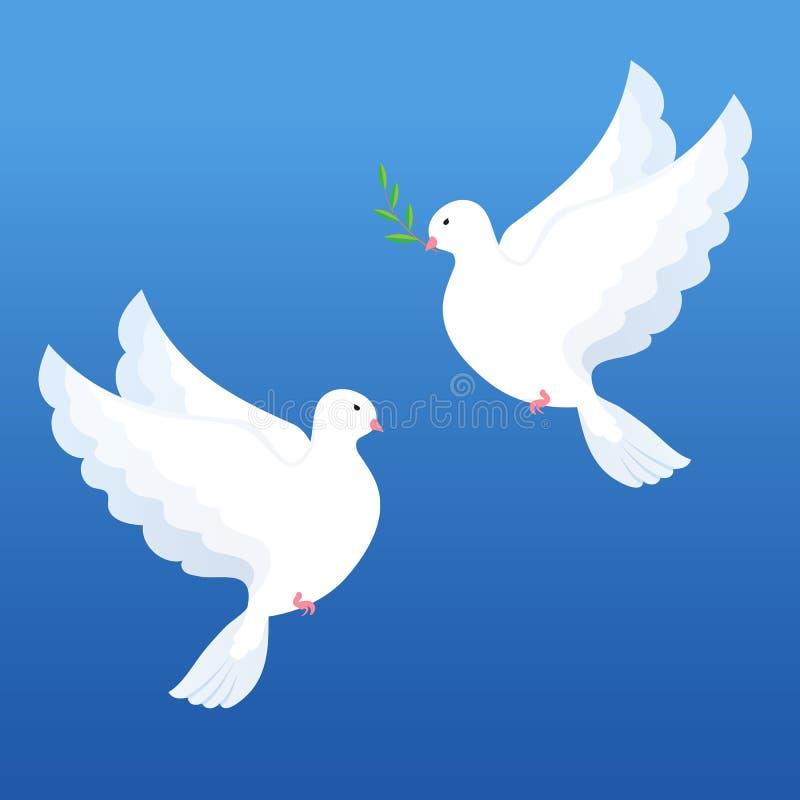 与橄榄色的枝杈的白色鸠在蓝色背景 向量例证