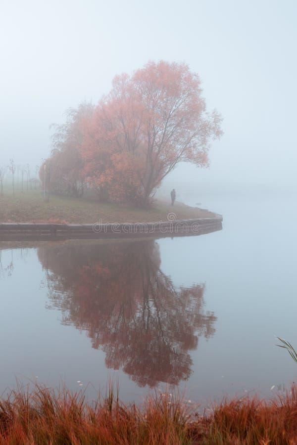 与橙树和湖反射的有薄雾的秋天风景 免版税图库摄影