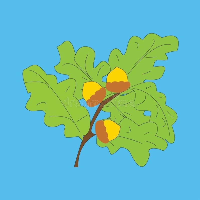 与橡子和叶子的橡木分支 库存例证
