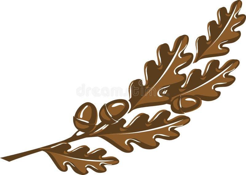 与橡子的棕色橡木分支 皇族释放例证