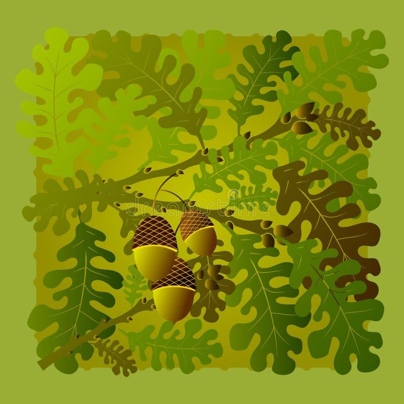 与橡子的绿色橡木分支 秋天例证或明信片 皇族释放例证