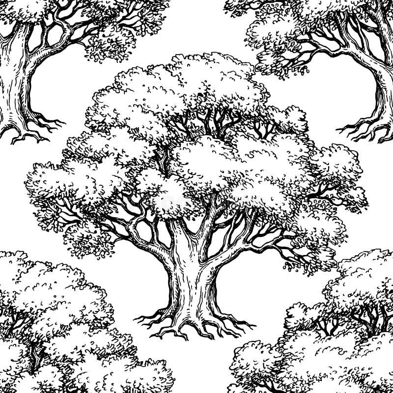 与橡木的无缝的样式 皇族释放例证