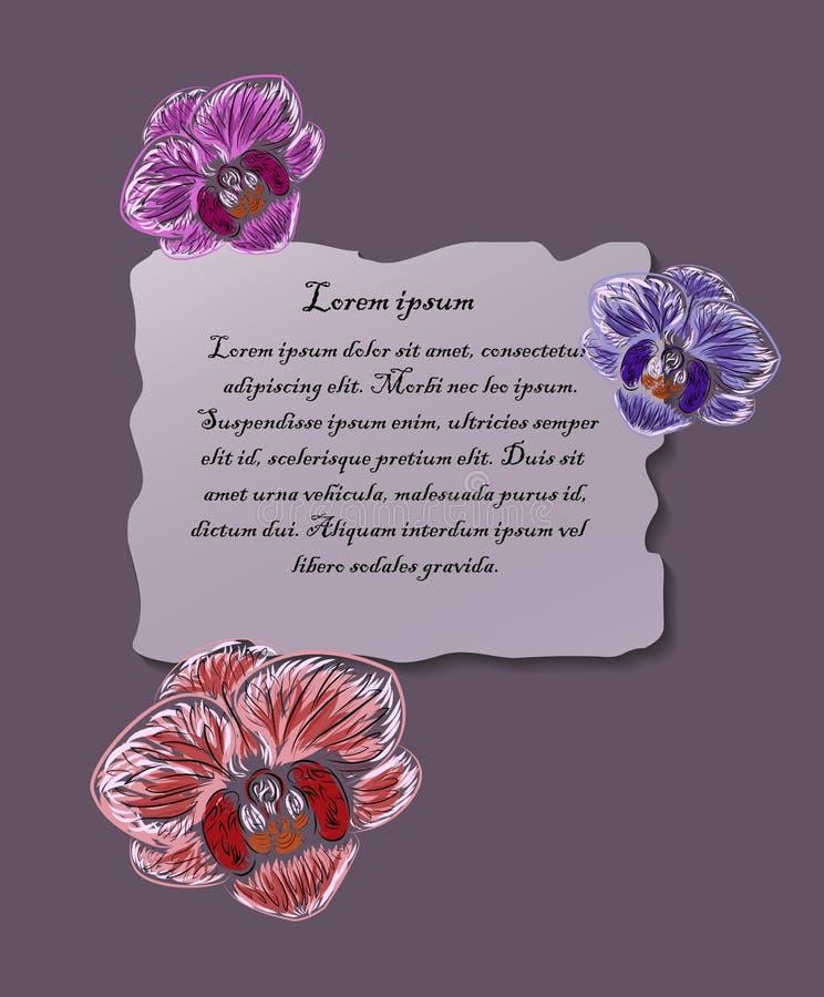 与正文框,模板的五颜六色的兰花 图库摄影